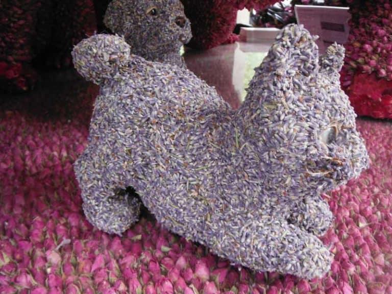 chelsea-flower-show-15